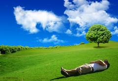 cloud's sheep (maktoufo) Tags: sleeping man clouds eid mubarak   aladha