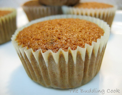 Carrot muffin1