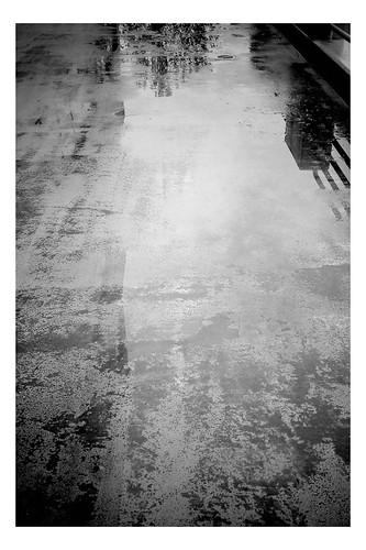 Untitled - 11/13/2010