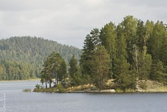 20100823_00091b (Fantasyfan.) Tags: trees lake nature topv111 tag3 taggedout island rocks tag2 tag1 cloudy small pines sysmä päijänne fantasyfanin