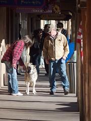Taos Plaza Walkers #3 (Michael C. Rael) Tags: plaza dog pedestrians taos