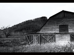 Valle Crucis Barn (azwoogie) Tags: blue autumn bw horse fall rural nc map north valle ridge carolina boone tone farn crucis
