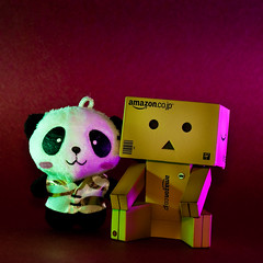 Danbo and Panda (Raymond Wijaya) Tags: toy lights amazon nikon colours nikkor lightroom yotsuba danbo revoltech danboard