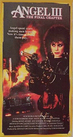 angel iii the final chapter starmaker vhs front