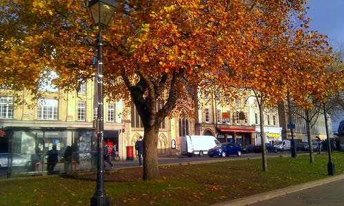 All Covered Up With Autumn, Bristol