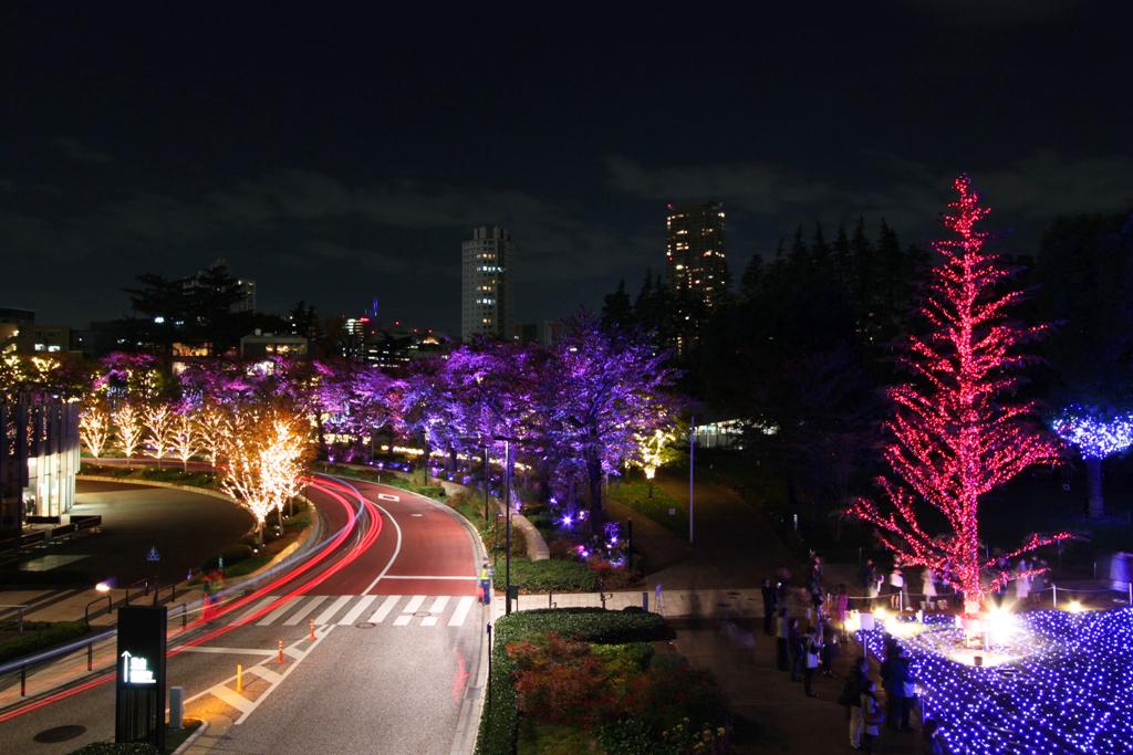 Tokyo-midtown Xmas illumination 2010 (2)