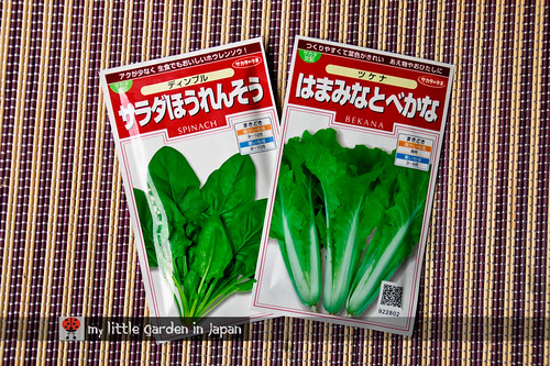 more-winter-vegetables-to-sow-2