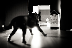 330/365 (Jesus Belzunce) Tags: dog project paper toys jay silent pentax jesus bob days perro 365 dias proyecto belzunce silencioso strobist k200d