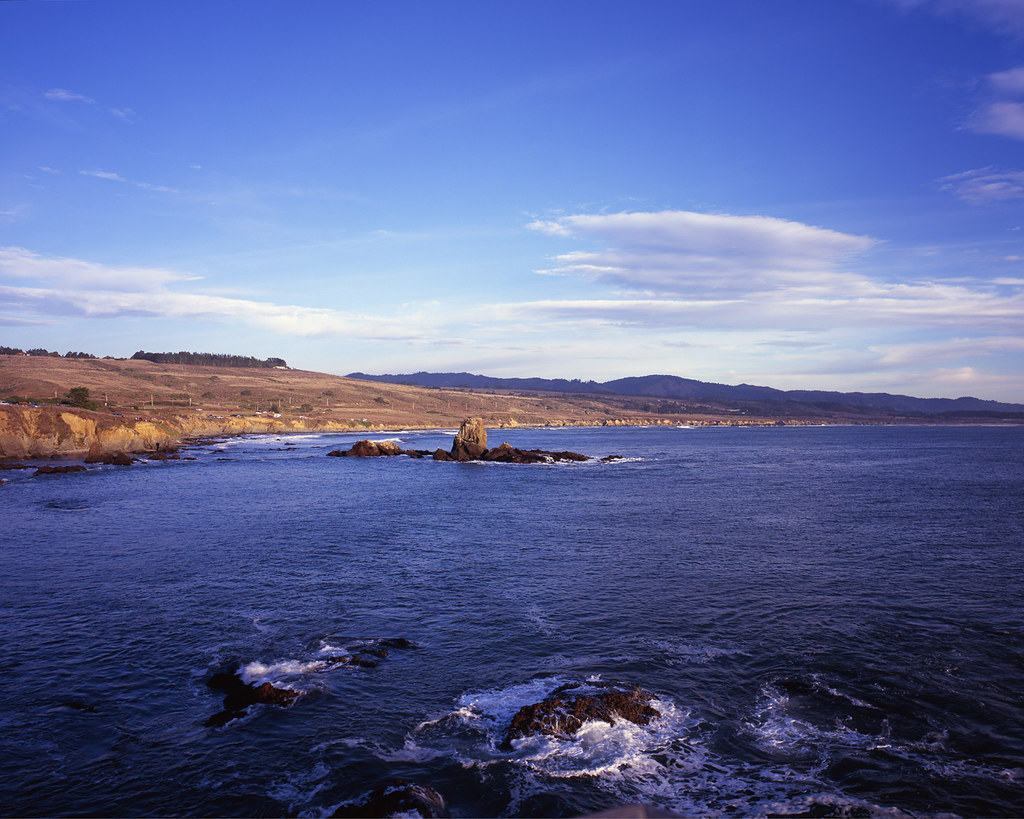 Pigeon Point Shoreline - Large Format Film