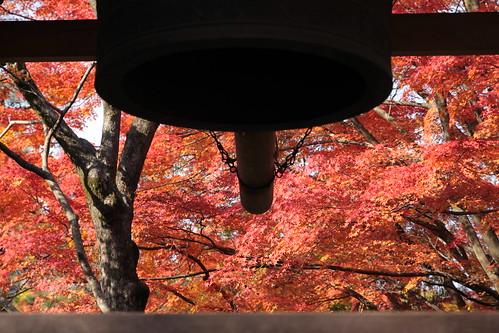 京都嵐山の紅葉