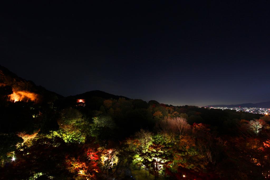 Kiyomizu-dera Illumination 2010  (3)