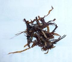 P1010624 tobacco