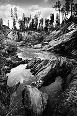 Money (Eric Leslie) Tags: ca landscape puddle us redding pinetrees bnw slab granit clearcreek