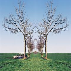 CNV00082 (ericjowett) Tags: trees face field car bluesky mirrorimage carcrash sunnyday burntoutcar niceday