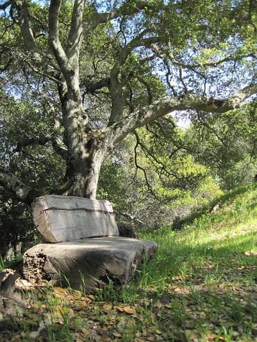 A quiet seat