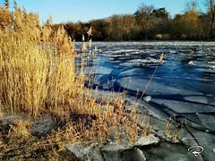 ICE IN THE RIVER #ice #river #frozen #winter #january #Schweinfurt #landscape #Landschaft #Photographie #photography (benicturesblackwhite) Tags: landscape landschaft ice river photography january schweinfurt photographie frozen winter