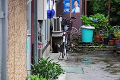 Today's Cat@2017-06-30 (masatsu) Tags: cat thebiggestgroupwithonlycats catspotting pentax mx1