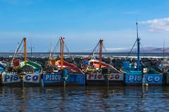 Le port de pêche de Pisco, Pérou  (in explore) (Pyc Assaut) Tags: leportdepêchedepisco pérou pyc5pyc pyc5pycphotography pycassaut peru pisco fishing bateaux boat mer colors couleurs