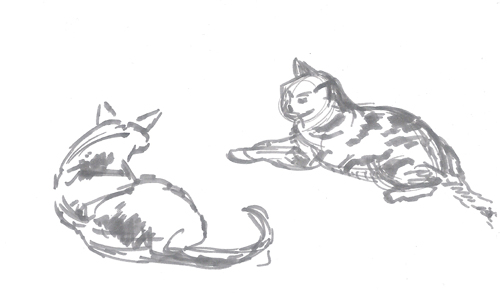 cat-like_shapes_in-conversation