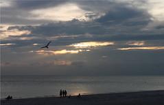 The rain stops for magic hour (sarah jo.) Tags: sunset people bird beach gulfofmexico canon magichour goldenhour cwd itrainedallday butthatsokay wewenttothebeach t1i magichourredux cwd1841 idontlikethebeach