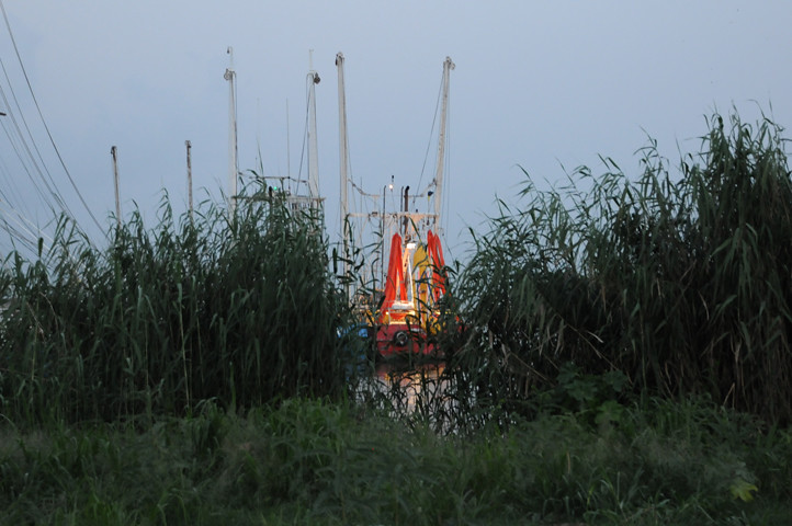 boat with boom through reeds_2091 web