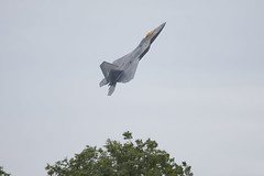 06-4108 - 4108 - US Air Force - Lockheed Martin F-22A Raptor - 100728 - Fairford - Steven Gray - IMG_2376