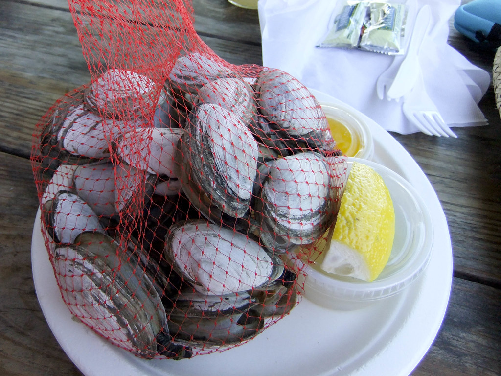 Steamed Clams, the Net Result