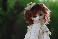 IMG_8323 (vivian_qsmc) Tags: sage rosenlied