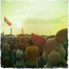 Dockville Festival 2010: Ferkel ist voll dabei! Yeahrr