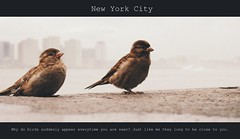 Close to you (Sophe's World) Tags: city newyorkcity music cinema newyork birds newjersey quote grain hudsonriver picnik closetoyou thecarpenters