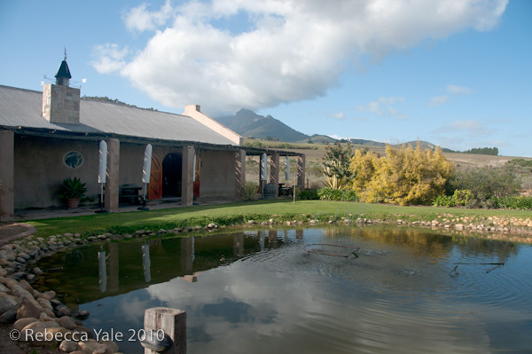 RYALE_Cape_Town-6