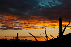 sunset-6220