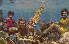 Mermaids on the Rocks - Cypress Gardens, Florida (The Pie Shops Collection) Tags: vintage florida mermaids cypressgardens postcar aquamaids