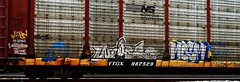 Webs - Mesm (mightyquinninwky) Tags: railroad train logo graffiti streak ns character tag graf tracks railway tags tagged stamp railcar rails buff graff graphiti freight stamped webs buffed carcarrier norfolksouthern trainart autorack holyroller rollingstock fr8 railart mesm spraypaintart moniker freightcar movingart freightart autoraxx paintedrailcar paintedautorack taggedrailcar autorax taggedautorack 11223344556677 carfireonflickr charactersformyspacestation
