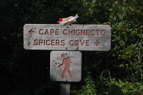 Cape Chignecto (252)