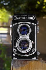 Minolta Autocord Model 1, 1965 (newmexico51) Tags: camera 120 tlr vintage reflex fifties minolta 120film 1950s twinlensreflex rollfilm autocord minoltaautocord