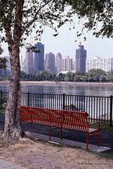 Bench by the river (Rafakoy) Tags: park new city nyc ny newyork color colour tree film colors 35mm vintage river bench 50mm photo nikon colours slide f100 nikonf100 queens costco epson positive v600 nikkor process longislandcity perfection kodachrome64 k14 afnikkor50mmf18d nikkoraf50mmf18d kodakkodachrome64 epsonv600 epsonperfectionv600 aldorafaelaltamirano dawynesphoto rafaelaltamirano aldoraltamirano
