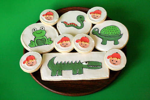 Reptile Cookies for Cole.