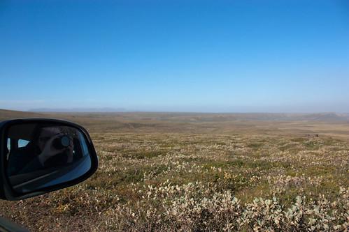 driving through Asbyrgi canyon