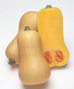 NAVER まとめ見た目はヘンな味は美味い野菜〔画像〕