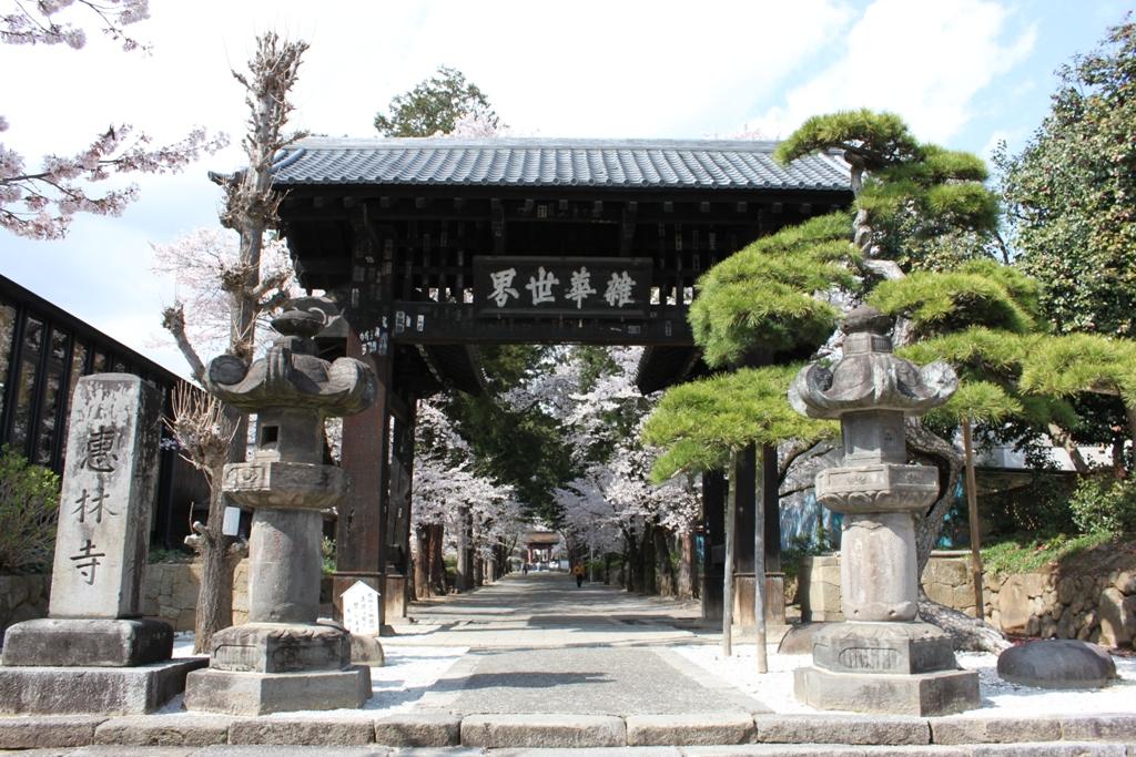 Sakura tour in Yamanashi (14)