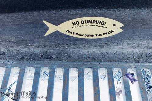 251-no dumping invert