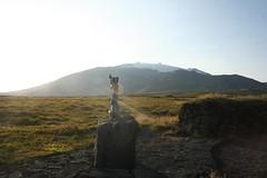 Laugarbrekka Islândia
