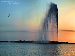 nice moments ~ (Waleed Ibrahem) Tags: sunset red sea sun bird beach water fountain beautiful birds king olympus sae jeddah  ibrahim zuiko waleed fahad                   e520   aldokhail