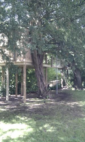 Tree House Prestbury  Image 5
