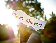 The Sun Also Rises. (tyreke.white) Tags: morning sun tree green yellow writing paper nikon hand bokeh fingers magenta flare sharpie d3000