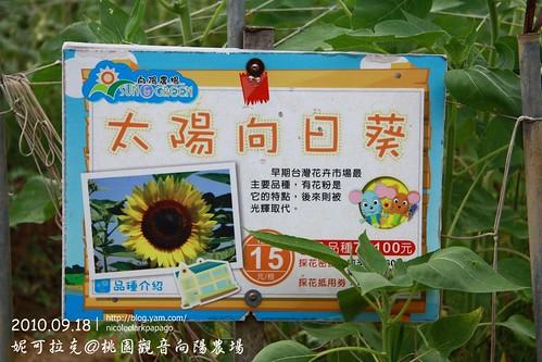 桃園觀音向陽農場20100918-081