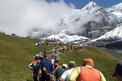 Můj první Jungfrau Marathon
