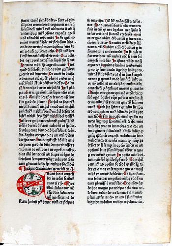Page of text from 'Paradisus conscientiae'. Sp Coll Hunterian Bg.2.11.