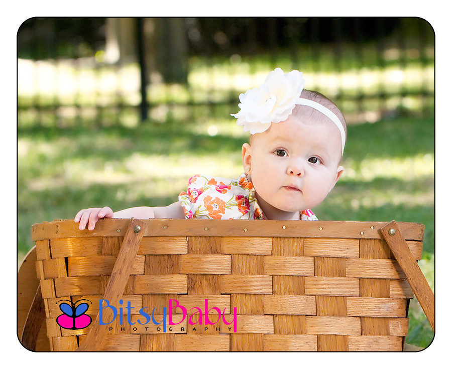 baby photographer annapolis maryland
